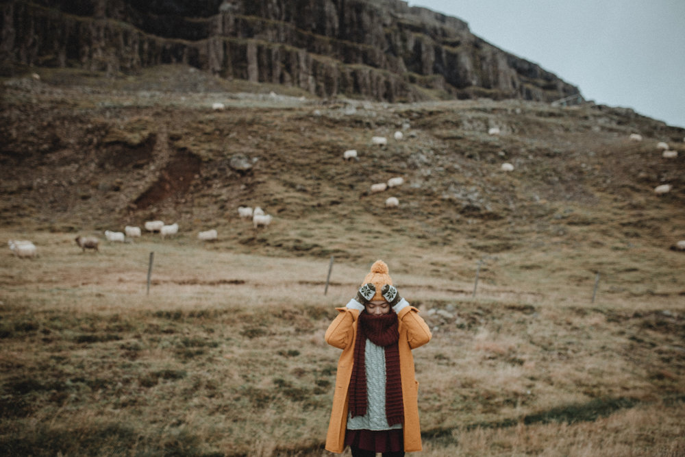 Tu-Nguyen-Wedding-Photographer-Iceland-Trip-41.jpg