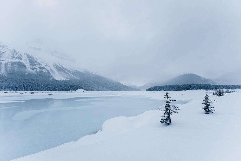 Jasper National Park-3.jpg