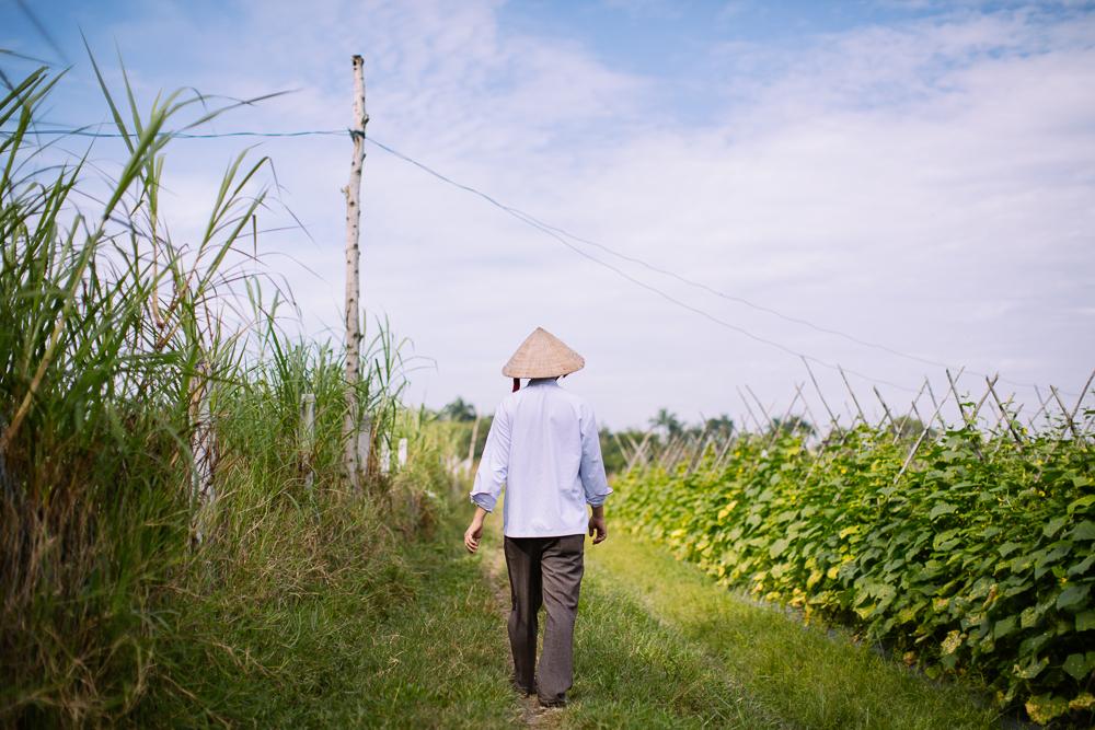 vietnam_travel_asia_hyatt_saigon_hoian_geo_008.jpg