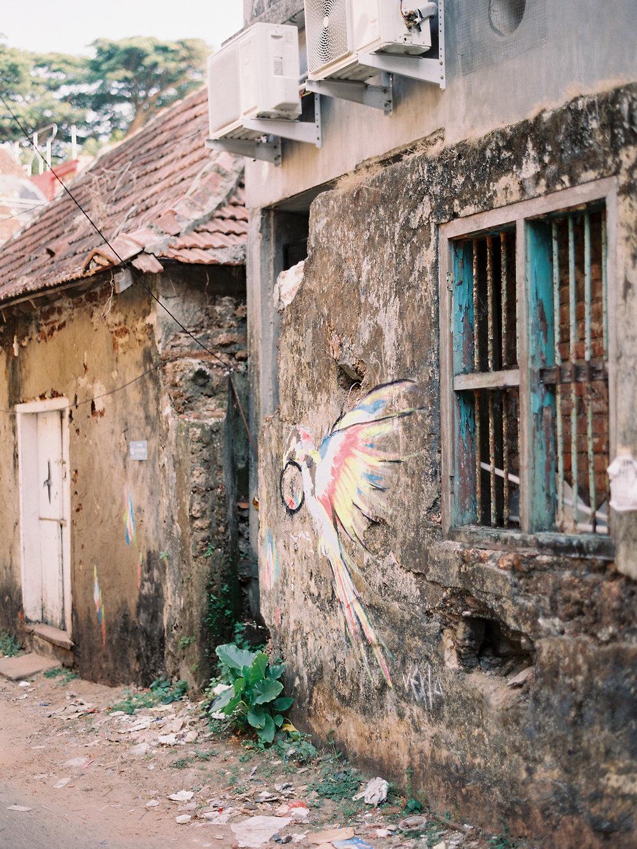 birgithart-travel-india_019.jpg