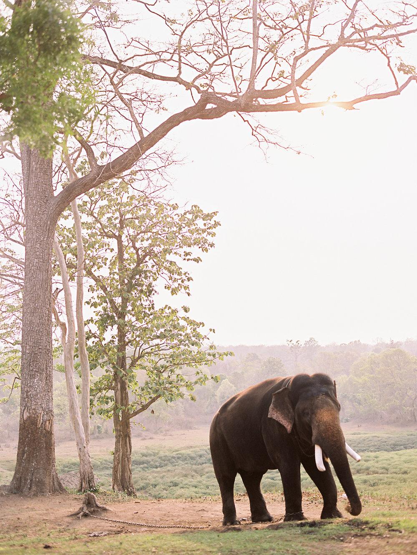 birgithart-travel-india_052.jpg