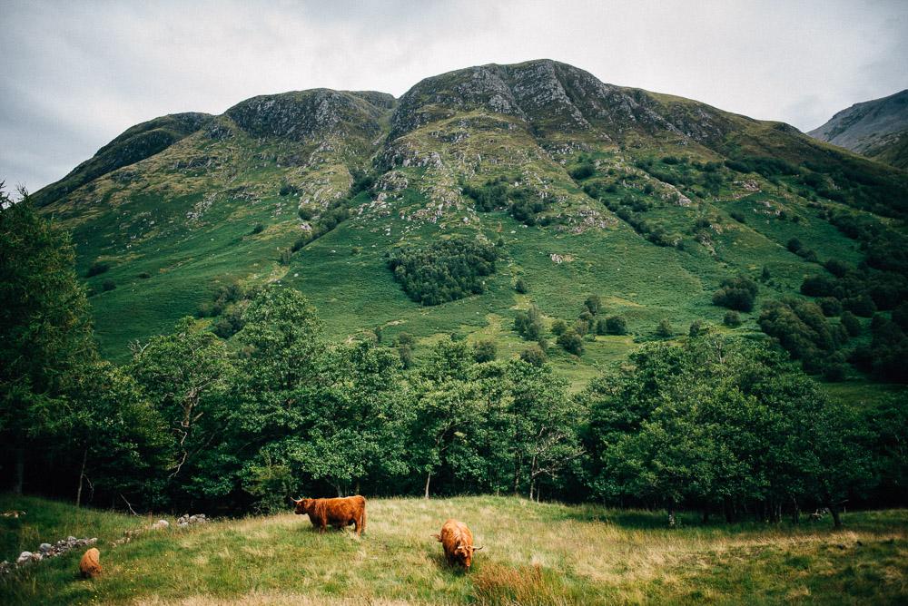 Schottland_FloFotografie_fernweh_031.jpg