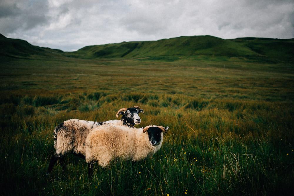 Schottland_FloFotografie_fernweh_042.jpg