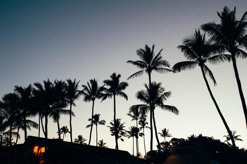 Tipps für Maui - Übernachten:Kā'anapali Beach HotelEssen: Mill House RestaurantPanorama: Sonnenaufgang am HaleakalāRoadtrip: Road to HanaGarten Eden:Maui Tropical Plantation