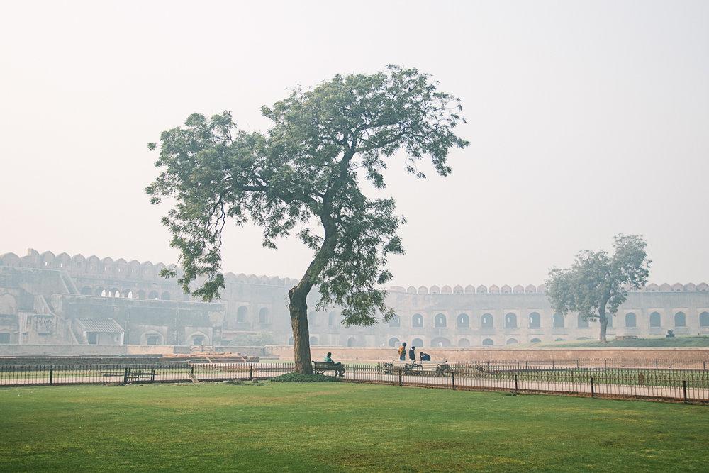 AlineLange_Indien_003.jpg