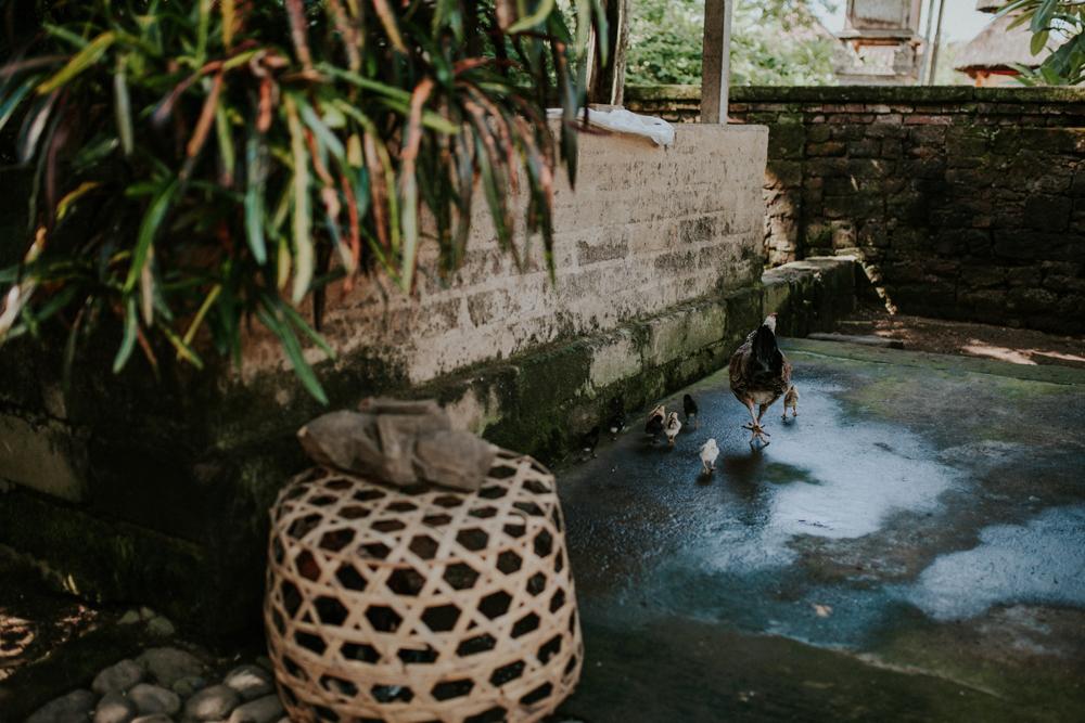 Bali (15 von 43).jpg