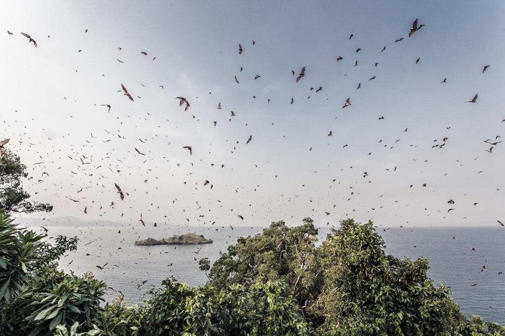 Ruanda chris frumolt 2015-22.jpg