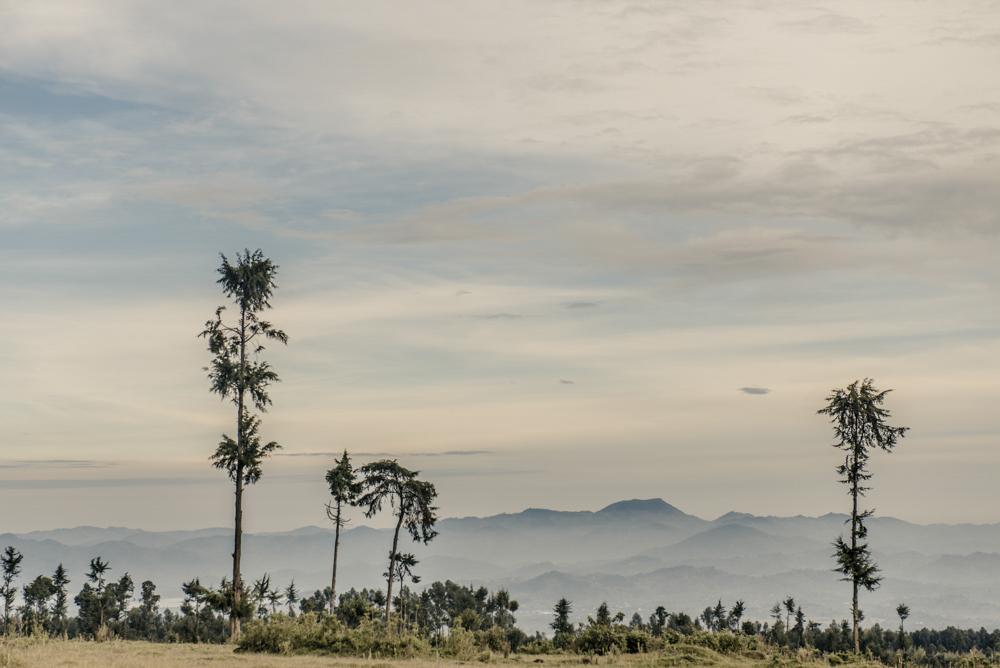 Ruanda chris frumolt 2015-49.jpg