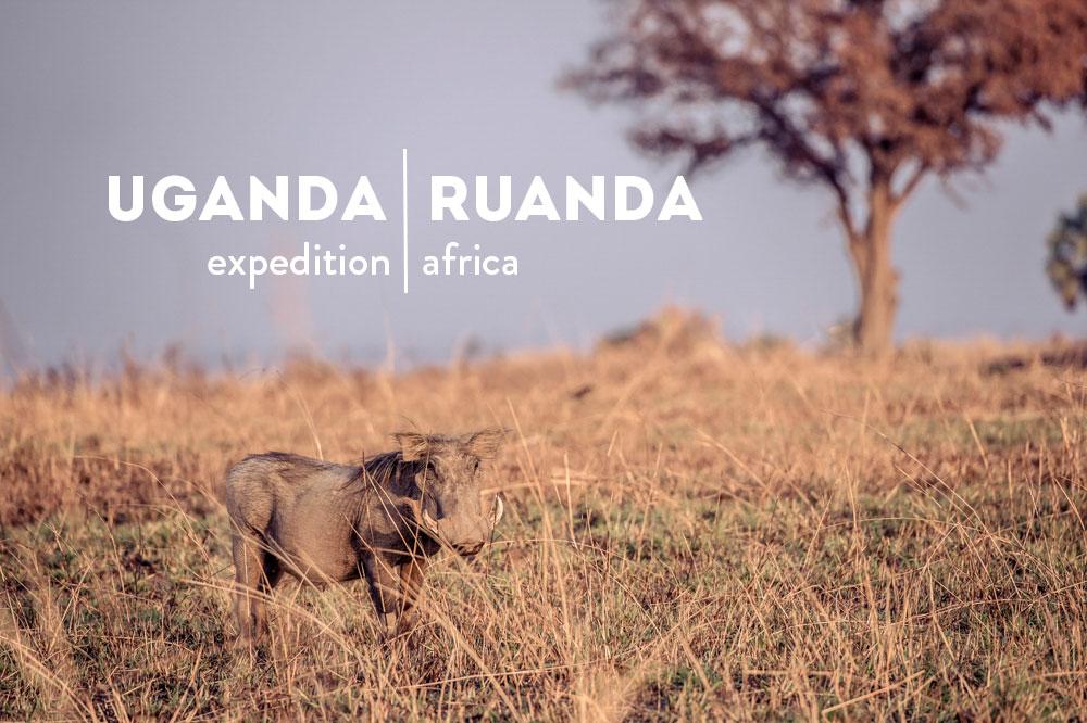 Header_Ostafrika.jpg