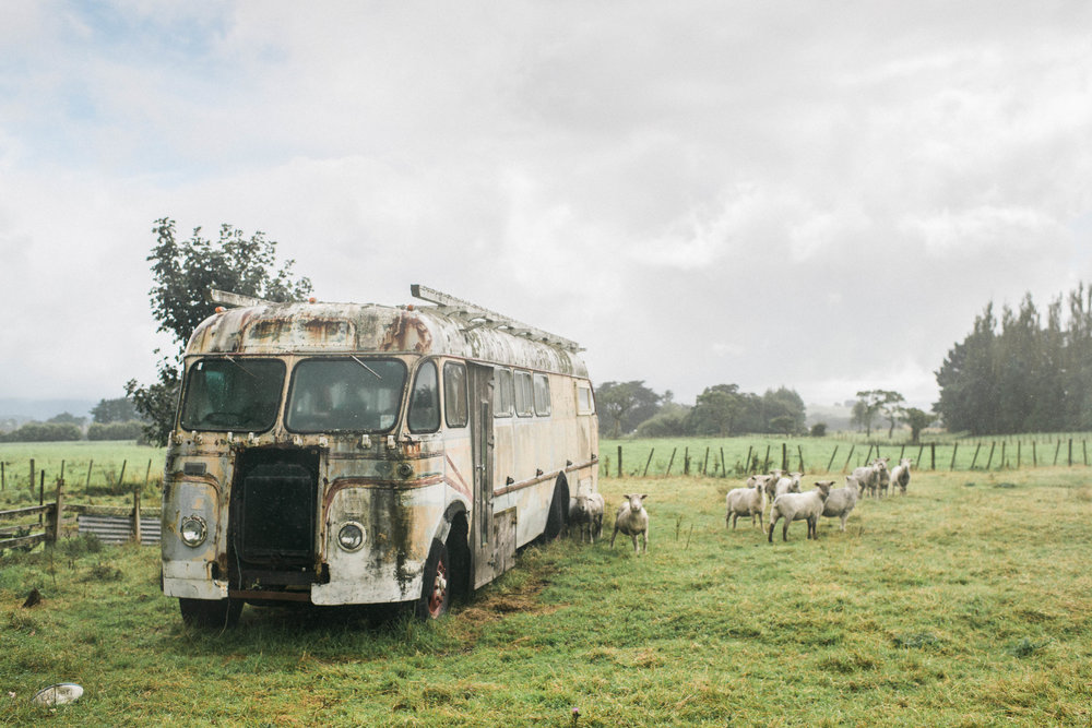 Neuseeland_DieHochzeitsfotografen_00.jpg