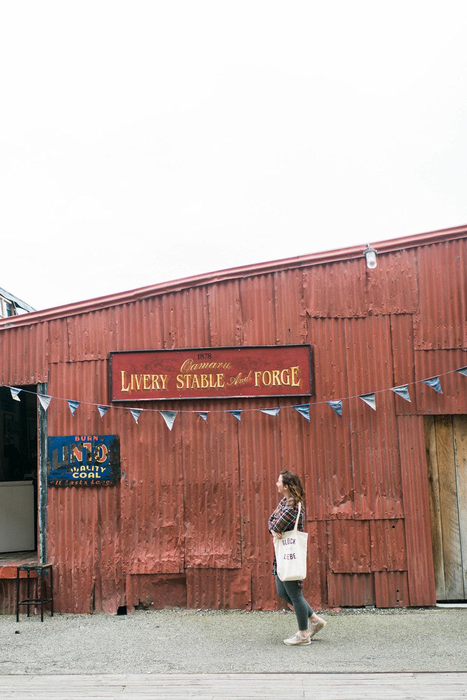 Neuseeland_DieHochzeitsfotografen_28.jpg