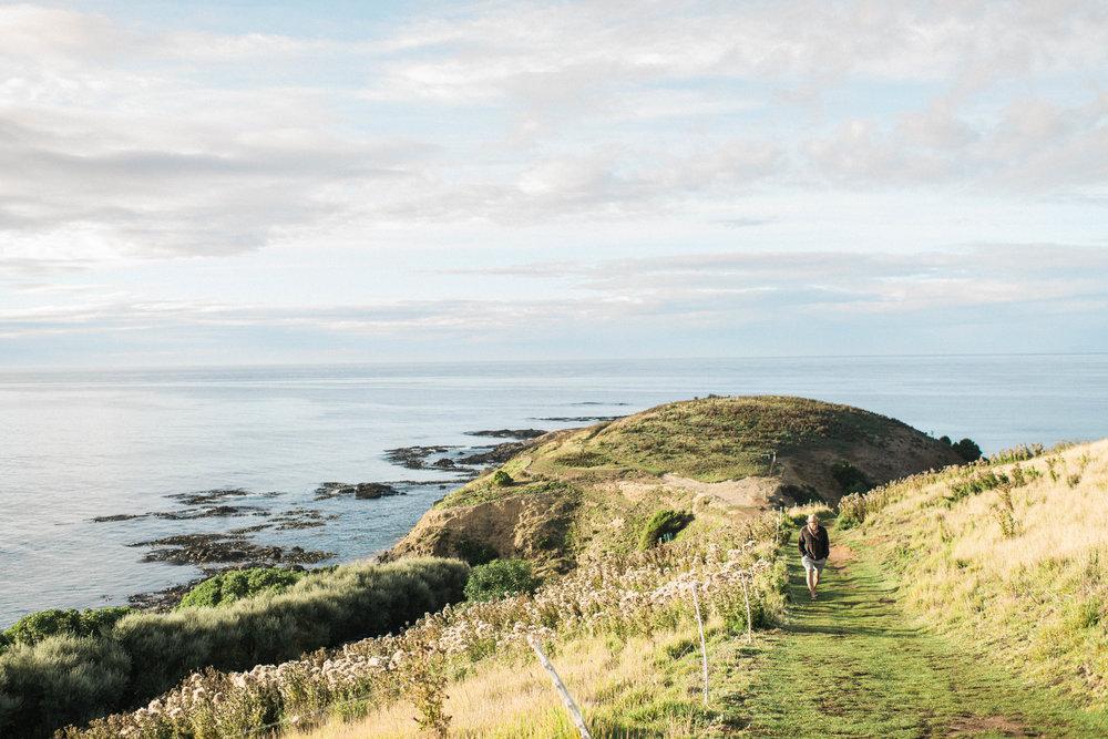 Neuseeland_DieHochzeitsfotografen_33.jpg