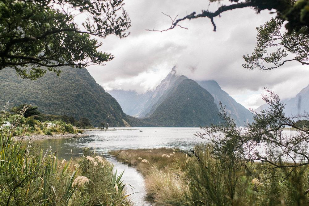 Neuseeland_DieHochzeitsfotografen_45.jpg