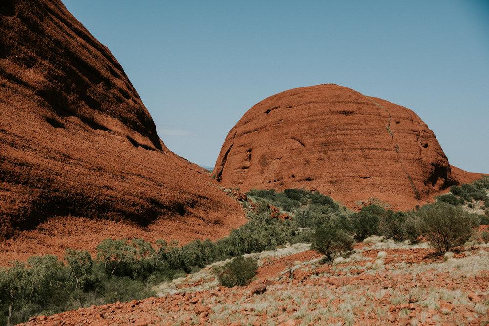 Outback(26von211).jpg