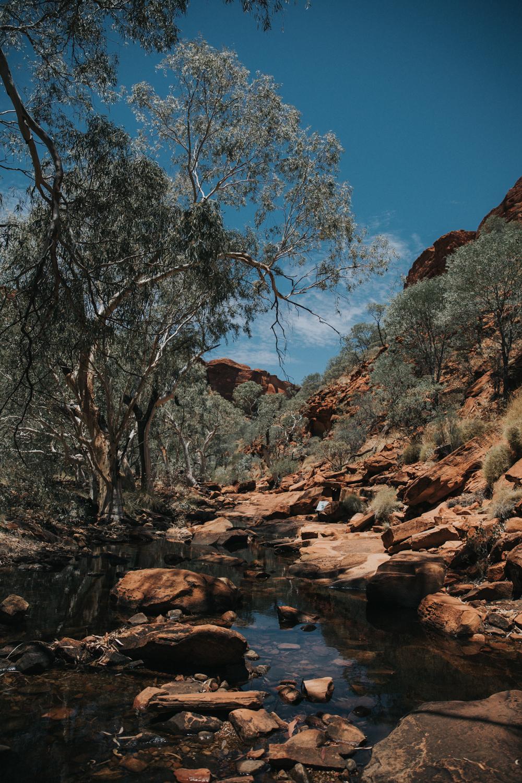 Outback(97von211).jpg