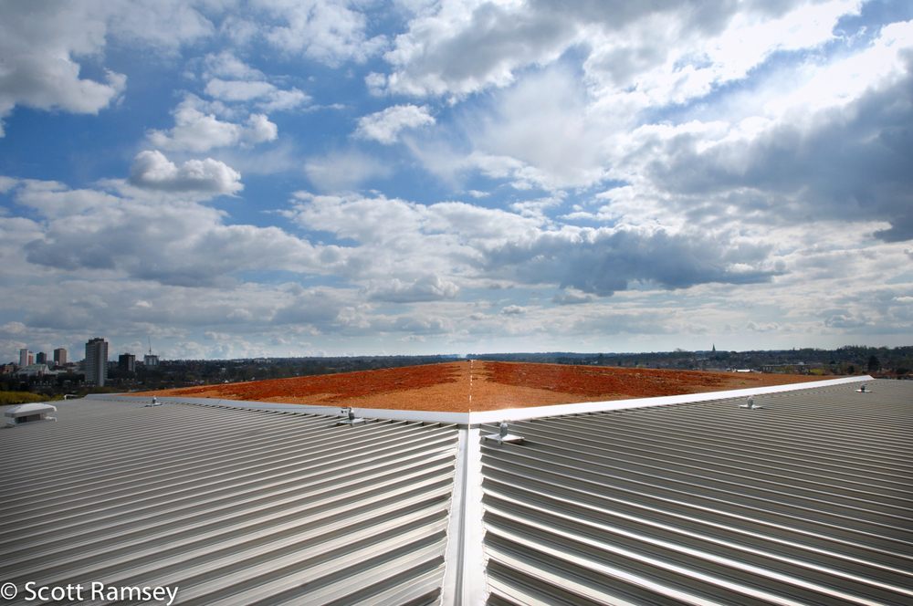 Corporate Photography London Office Roof