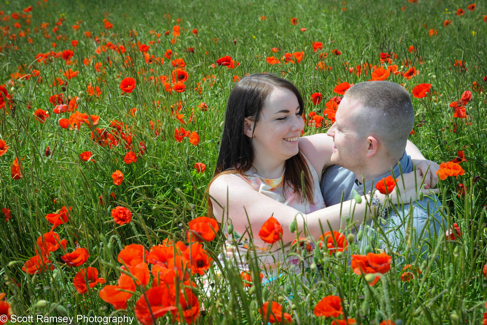 Poppy Field Pre Wedding Photo