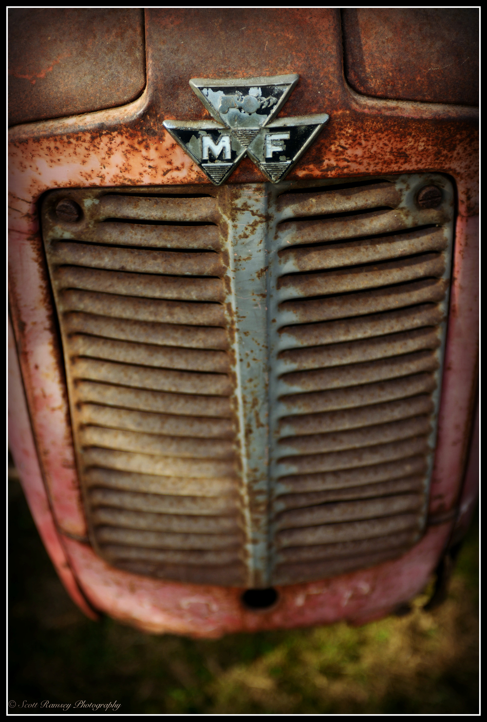 The front of a rusty old red vintage Massey Ferguson Tractor.