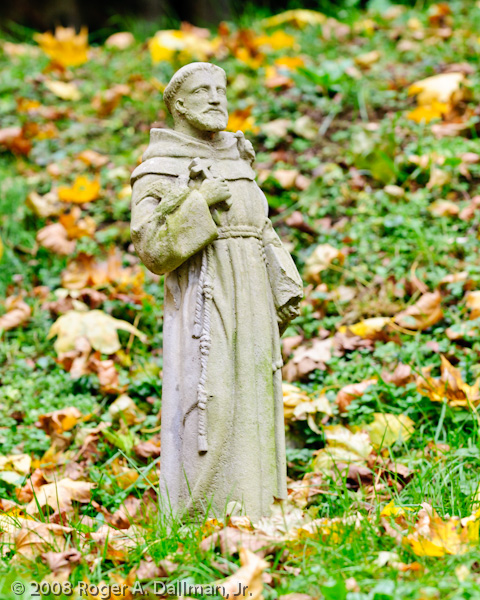 st. francis, leaves, fall, statue