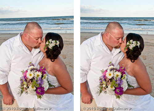 wedding, couple, beach, horizon tilt