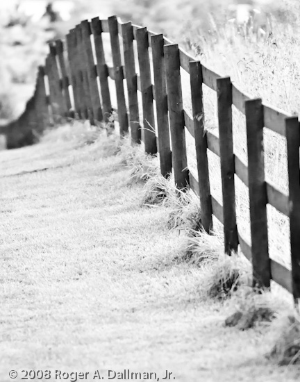 high contrast, black and white, fence