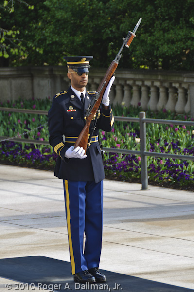 Soldier of the Old Guard, Arlington National Cemetery, Virginia.