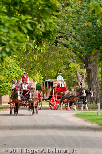 horse-drawn carriages in Williamsburg, Virginia