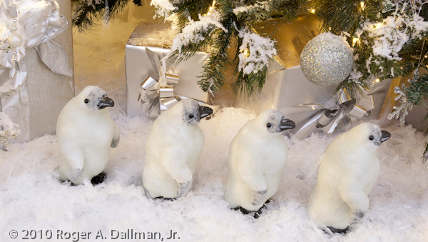 Penguins in a Christmas shop.