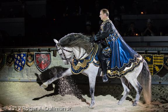 Prancing horse at Medieval Times