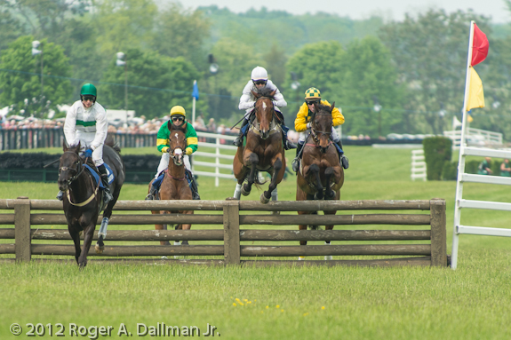 Horse jumping the fence at the Virginia Gold Cup Race