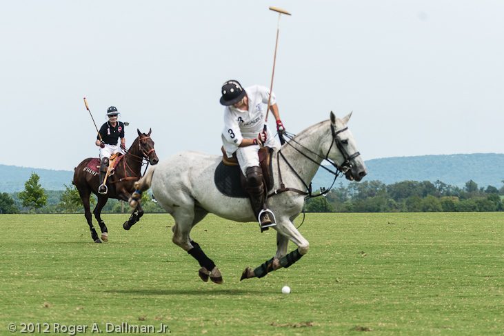 Polo match in northern Virginia