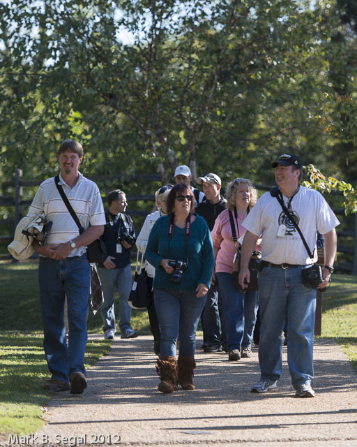 Photowalkers in a pack