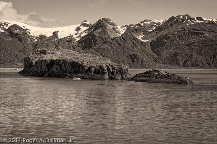 Island near Seward, Alaska, black and white photography
