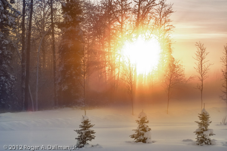 Photo of ice fog in Alaska, winter