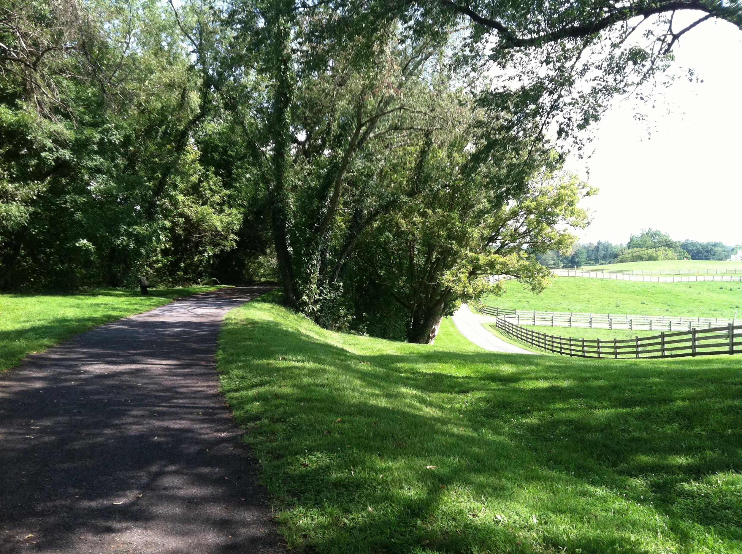 Virginia Creeper Trail 1a