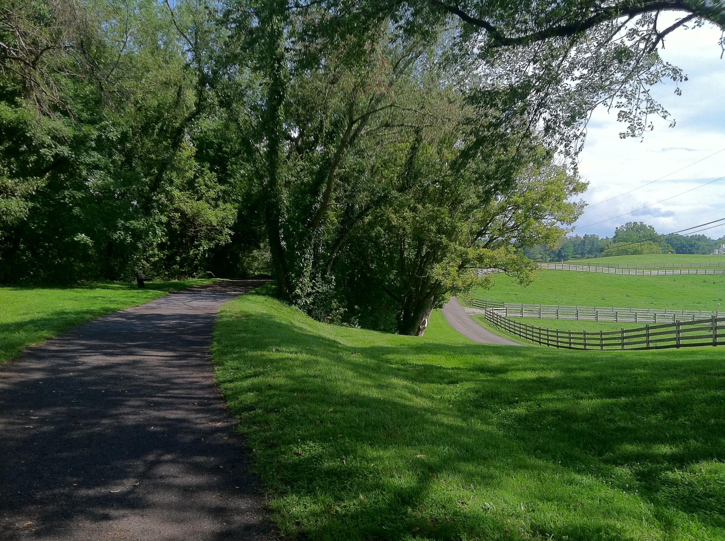 Virginia Creeper Trail 1b