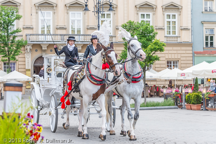 horse drawn carriage in Krakow, Poland