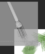 brush graphic.PNG