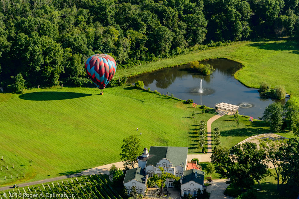 Convenient - landing the balloon next to a vineyard