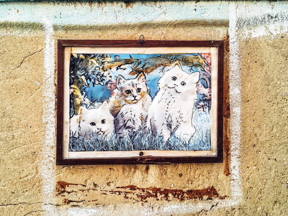 Awesome wall art, with a bonus wooden frame!