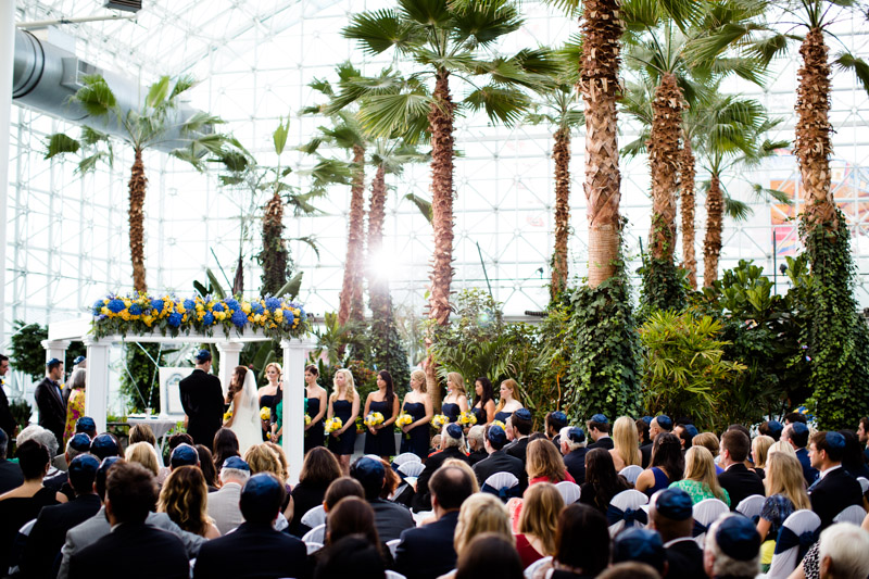 crystal-gardens-wedding-featured-chicago-photographers-117.jpg