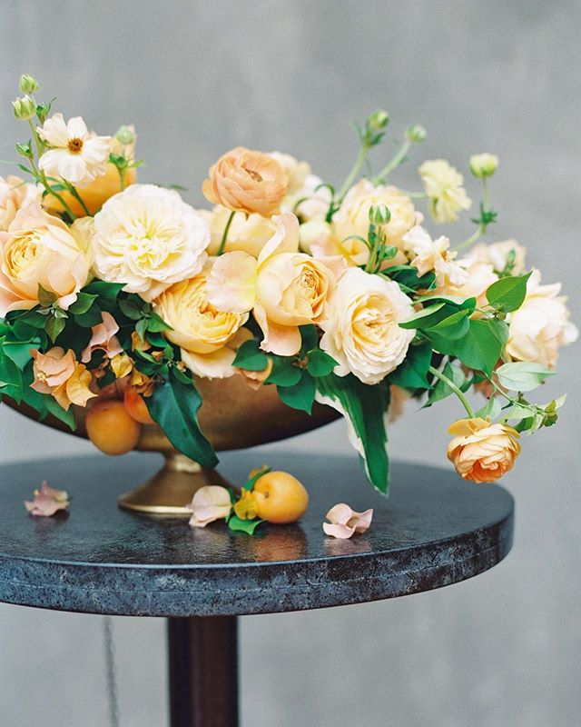 "I often hear the word ""moment"" used to describe a portion of an arrangement where all the elements seem to come together beautifully. As floral designers, we often work to create them within arrangements, so it's such a treat when a photographer notices them too. Here is one such moment effortlessly styled by @mayhardesign and captured beautifully by @kaylabarkerphoto. . . Image: @kaylabarkerphoto Florals: @sproutflowers Styling: @mayhardesign Venue: @thehotelemma . . . . #sproutweddings #sproutcenterpiece #webelieveinbeauty #hillcountryweddings #sanantonioweddings #austinweddings #weddinginspiration #weddingflowers #fineartwedding #fineartflorist #floraldesign #flowersofinstagram #peachesandcream #gardenroses #caramelantike #ranunculus"