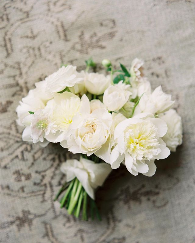 White on white on white—always a classic. . Image: @michelleboyd Florals: @sproutflowers Styling/Planning: @mayhardesign . . . . #sproutweddings #sproutbouquet #webelieveinbeauty #hillcountryweddings #austinweddings #weddinginspiration #filmphotography #weddingflowers #fineartwedding #fineartflorist #floraldesign #flowersofinstagram #whiteranunculus #whitepeony #whitegardenroses #whitehellebores  #whitetulips