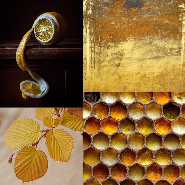 Inhale 4.2 Elements of gold. . (Full photo credits on the blog—see link in profile) . . . . . #webelieveinbeauty  #inhalebeauty #sproutinhaleseries #weddinginspiration #elementsofgold