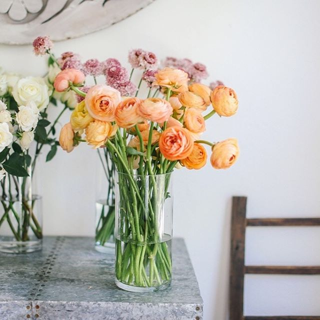 What would we do without ranunculus??? .  Image: @graciebyrdjones . . . . . #ranunculus #sproutweddings #webelieveinbeauty #hillcountrywedding #austinweddings #sanantonioweddings #weddingflowers #weddingdesign #fineartwedding #fineartflorist #fineartflowers #floraldesign #flowersofinstagram #flowergram #flowerstagram #floweroftheday #flowerstalking #floralstudio #realwedding #weddinginspiration