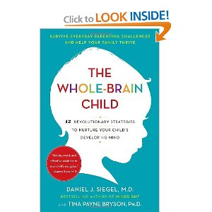 The Whole Brain Child by Dan Siegel