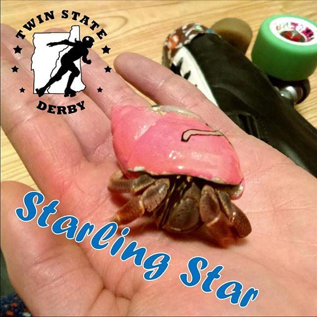 It's #rollerfurbyfriday! Head to our FB page to learn some fun facts about Starling Star and her fluffy pal Mutton and get a chance to win a pair of #freetickets to our September 29th home against the @ccrollerderby. #hint #itsacaptain #derbypets #TwinStateDerby #hermitcrab