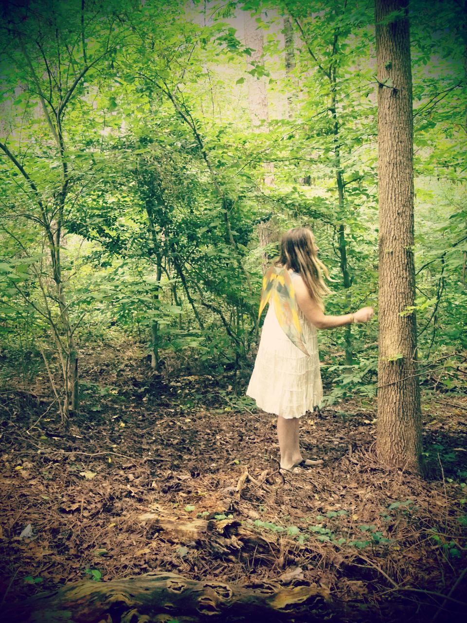 bloggy faerie in woods3.jpg