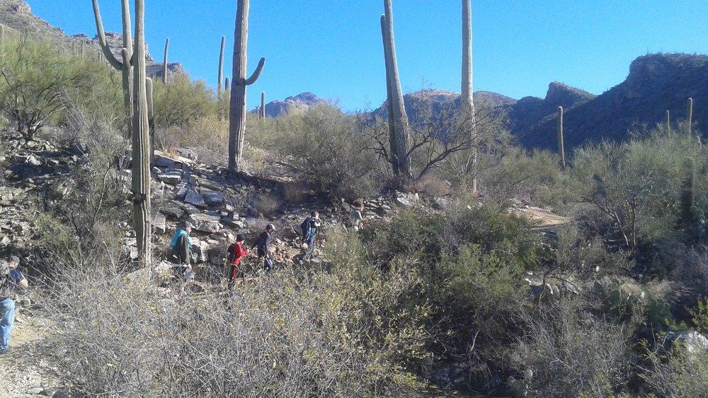 SabinoCanyon desert trail2.jpg