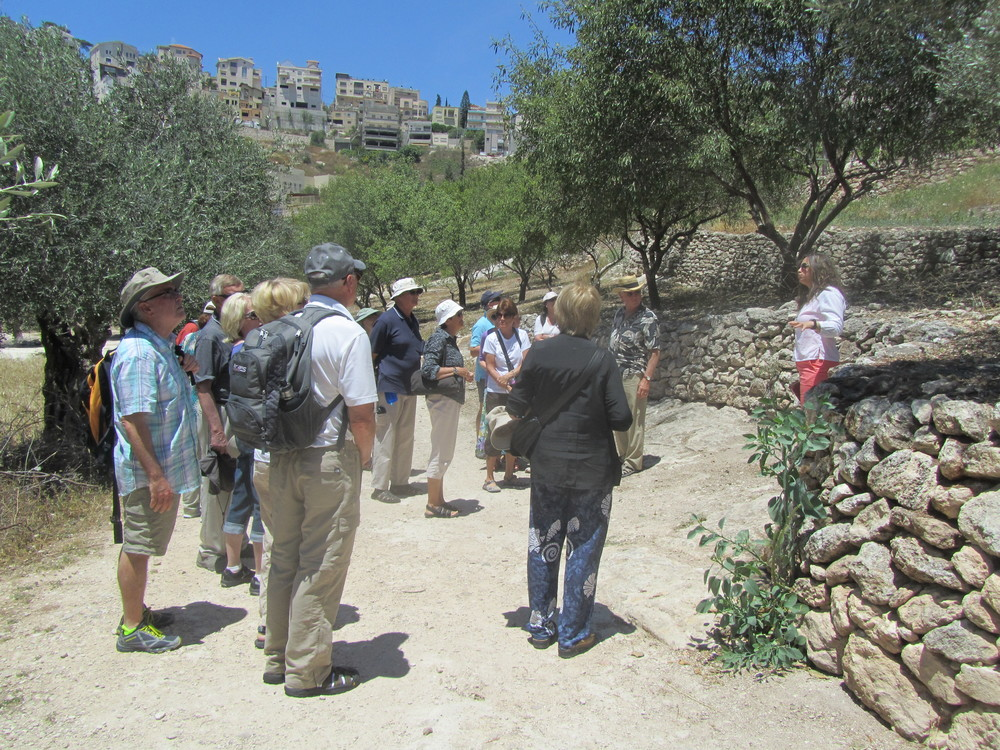 Exploring the Reconstructed First Century Nazareth Village